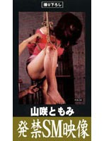 (pje004)[PJE-004] 発禁SM映像 山咲ともみ ダウンロード