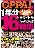 OPPAI 1年分全タイトルまるごと収録!! 16時間 ダウンロード