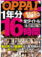(ppbd00071)[PPBD-071] OPPAI 1年分全タイトルまるごと収録!! 16時間 ダウンロード
