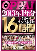 OPPAI 2013年1年分 全タイトルまるごと収録!!16時間 ダウンロード