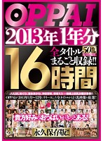 (ppbd00085)[PPBD-085] OPPAI 2013年1年分 全タイトルまるごと収録!!16時間 ダウンロード