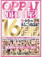 OPPAI 2014年1年分 全タイトルまるごと収録!!16時間 ダウンロード