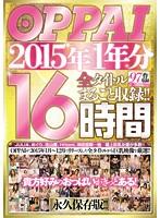 OPPAI 2015年1年分 全タイトルまるごと収録!!16時間