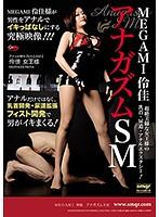 「MEGAMI 伶佳 アナガズムSM」のパッケージ画像