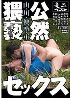 山・川・便所・車 公然猥褻セックス ダウンロード