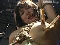 龍縛監禁凌辱5 捕獲 M女への洗脳… 渡瀬晶 サンプル画像 No.2