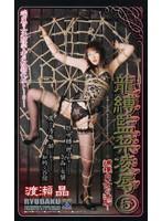 龍縛監禁凌辱5 捕獲 M女への洗脳… 渡瀬晶 ダウンロード