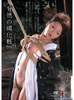 背徳の縄化粧 山口玲子 ダウンロード