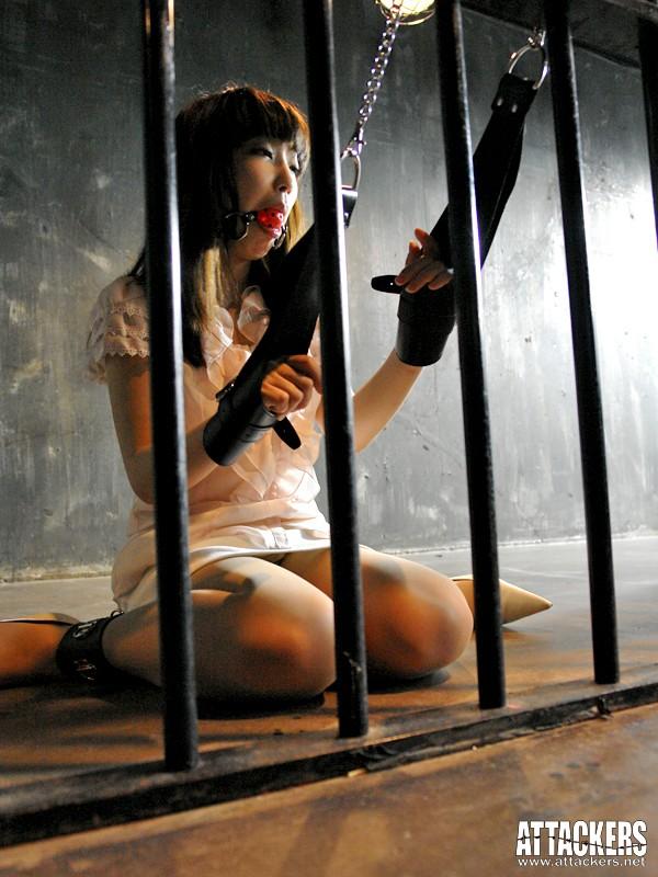黒い欲望に全てを奪われて… 貴婦人と令嬢の絶望 杏樹紗奈 澤村レイコ の画像1