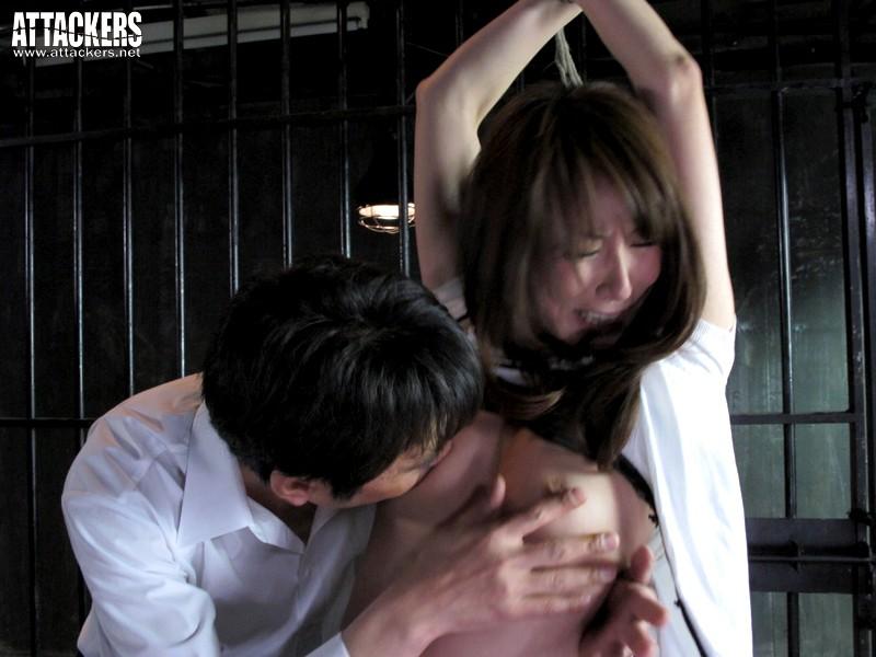 黒い欲望に全てを奪われて… 貴婦人と令嬢の絶望 杏樹紗奈 澤村レイコ の画像10