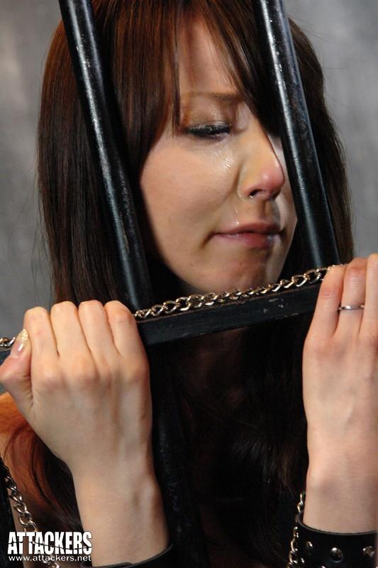 黒い欲望に全てを奪われて… 貴婦人と令嬢の絶望 杏樹紗奈 澤村レイコ の画像9