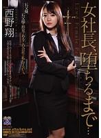 (rbd00378)[RBD-378] 女社長、堕ちるまで… 西野翔 ダウンロード