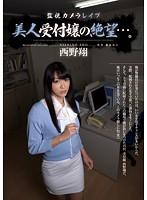 (rbd00449)[RBD-449] 監視カメラレイプ 美人受付嬢の絶望…。 西野翔 ダウンロード