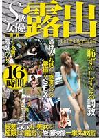 「S級女優限界露出 16時間」のパッケージ画像