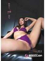 「股間☆「ネ申」接写 赤西涼」のパッケージ画像