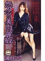 (shk101)[SHK-101] 女社長レイプ.怨念の美肉麗奴 ダウンロード