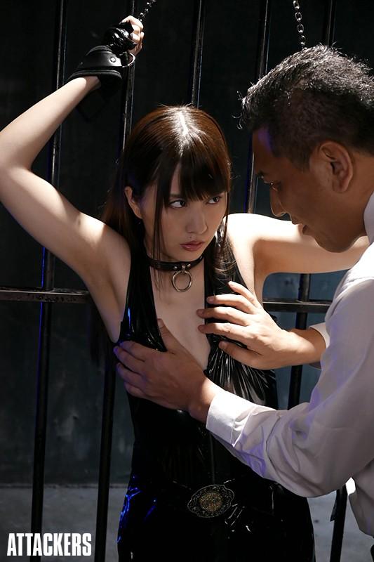 裏切られた捜査官、快楽に堕つ 桜木優希音 の画像1