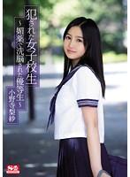 「犯された女子校生~媚薬で洗脳された優等生~ 小野寺梨紗」のパッケージ画像