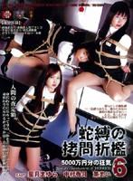 蛇縛の拷問折檻6 5000万円分の狂気