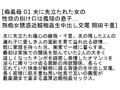 【お得セット】痴義母 翔田千里 広瀬奈々美 蓮実クレア 2