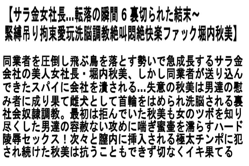 【お得セット】サラ金女社長…転落の瞬間 神波多一花 椎名ゆな 堀内秋美