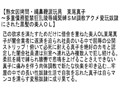 【お得セット】女因拷問 東尾真子 朝桐光 白鳥寿美礼 2