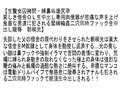【お得セット】女因拷問 東尾真子 朝桐光 白鳥寿美礼 4