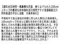 【お得セット】女因拷問 東尾真子 朝桐光 白鳥寿美礼 6