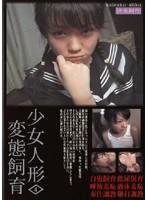 二宮沙羅/少女人形変態飼育4[動画]