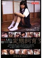 少女人形と変態バツイチ三兄弟 変態飼育3 ダウンロード