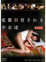 (std00028)[STD-028] 変態飼育される少女達 ダウンロード