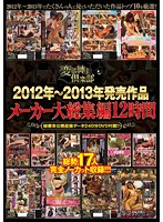 (stol00009)[STOL-009] 2012年〜2013年発売作品メーカー大総集編12時間 ダウンロード