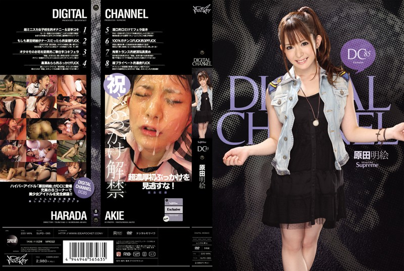 DIGITAL CHANNEL DC85 原田明絵