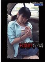 少女誘拐飼育ファイル2