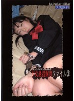 少女誘拐飼育ファイル3 ダウンロード