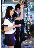 通学途中に痴漢の手によって絶頂を教え込まれた女子 辻本杏