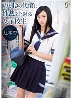 「万引きの代償に性裁を下される女子校生 辻本杏」のパッケージ画像