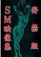 発禁版 SM映像集 ダウンロード