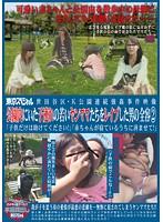 世田谷区・K公園連続強姦事件映像 公園内にいた子連れの若いヤンママたちをレイプした男の全容2 「子●だけは助けてください!」「赤ちゃんが寝ているうちに済ませて!」 ダウンロード