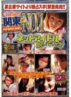 (vfpl001)[VFPL-001] 関東RANKING NO.1ネットアイドルが脱いでいた! ダウンロード