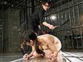 [VICD-383] Hcup母乳パワハラ女上司 引き裂きアナル拷姦 桑田みのり