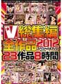 V総集編2012 全作品スペシャルDVD 23作品8時間