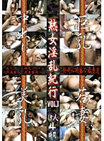 (went29)[WENT-029] 熟女淫乱紀行 VOL.1 ダウンロード
