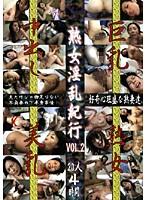 (went30)[WENT-030] 熟女淫乱紀行 VOL.2 ダウンロード