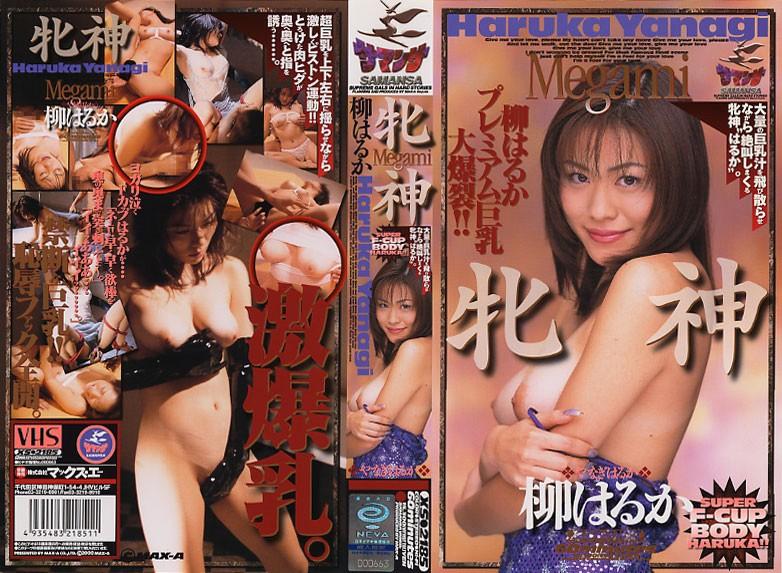 爆乳の高見涼(柳はるか)出演の羞恥無料動画像。牝神 Megami 柳はるか