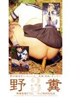 (yze003)[YZE-003] 野糞 3 ダウンロード