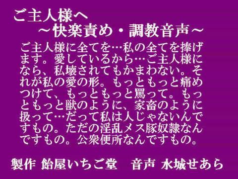 【オリジナル同人】ご主人様へ ~快楽責め・調教音声~