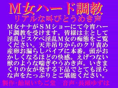 【オリジナル同人】M女ハード調教・リアルな叫びとうめき声 wav版