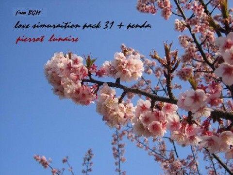 【オリジナル同人】著作権フリーBGM集 vol.-9 「恋愛シミュレーションパック31曲+効果...