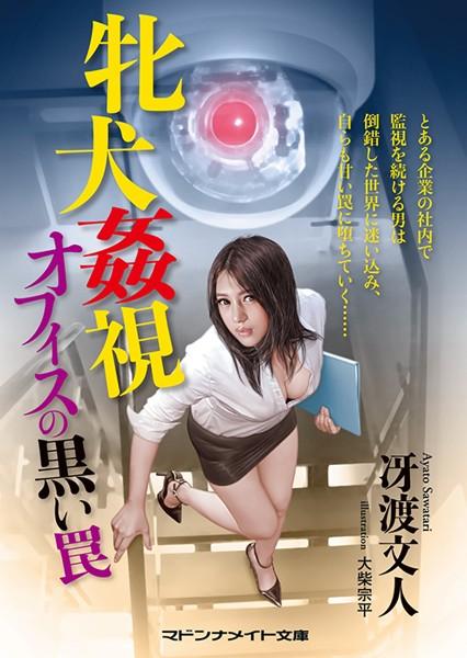 牝犬姦視 オフィスの黒い罠 (小説)
